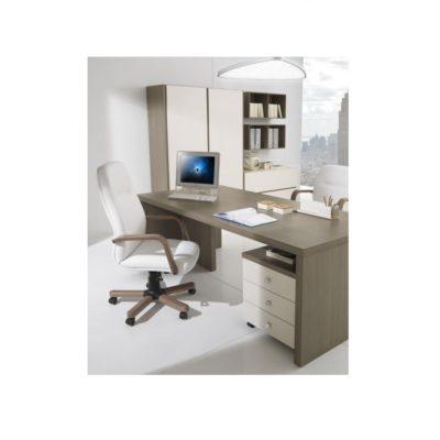 birou managerial